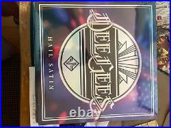 Foo Fighters (Dee Gees) Hail Satin 2021 RSD Record Store Day Vinyl LP In Hand